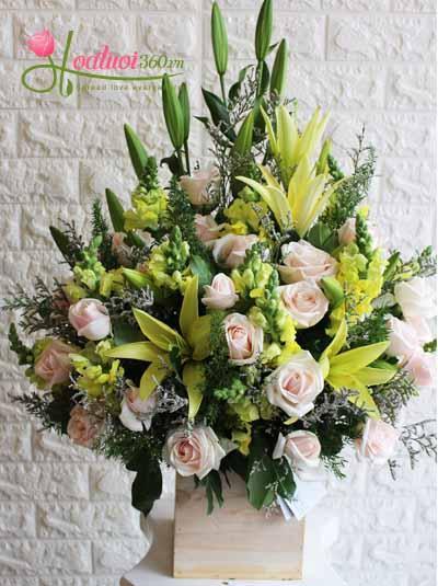 Hoa chúc mừng- Đơn giản sang trọng